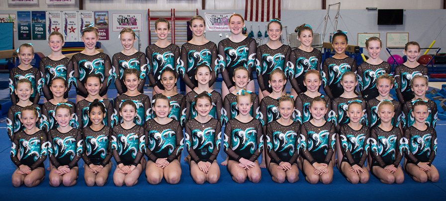 2015 girls gymnastics team photo