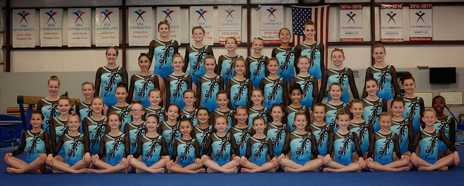 2017 girls gymnastics team photo